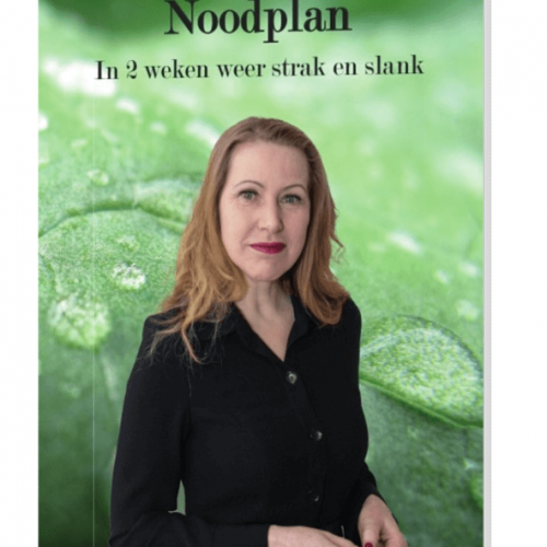 Boek Knock-out Body Noodplan
